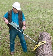P-4000 Metal Detector for Logs